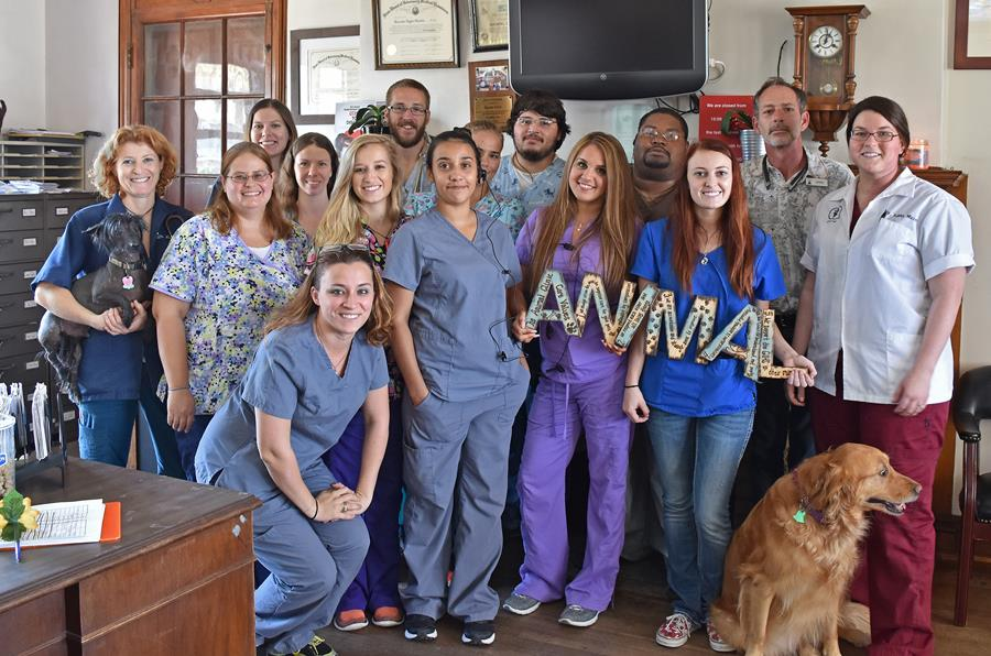Veterinarians - Pet Care - The Animal Clinic - Galveston