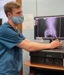 Pet Digital Radiography Services - Galveston, TX 77550